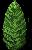 arbuste2.png